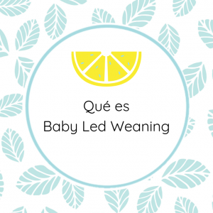 qué es baby led weaning