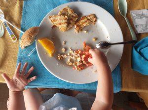 Mochi comiendo pollo a la brasa y tomatito